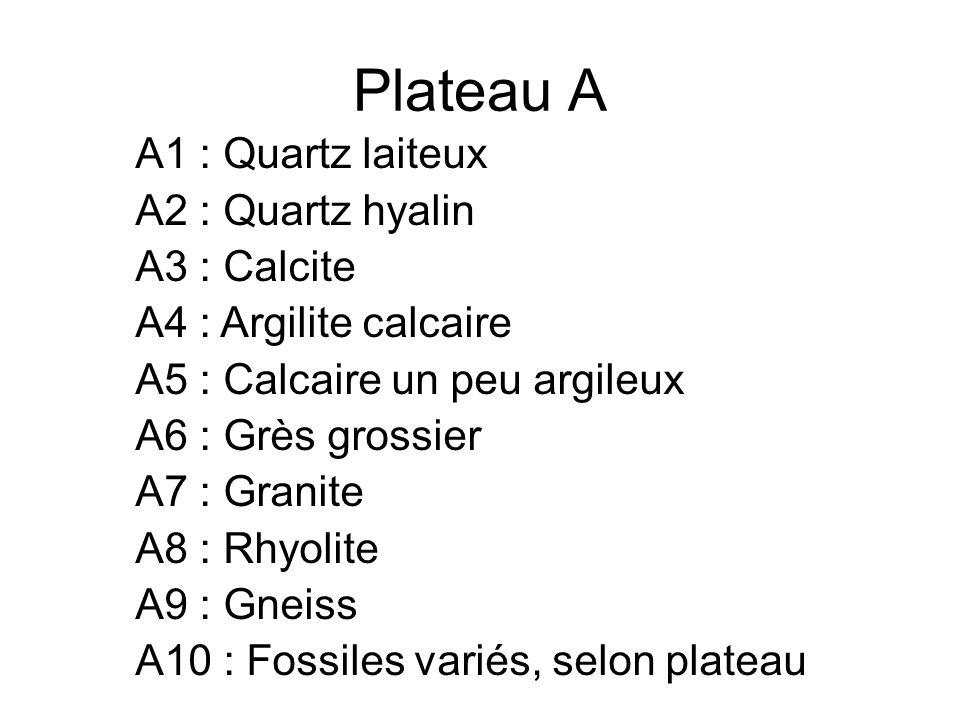 Plateau A A1 : Quartz laiteux A2 : Quartz hyalin A3 : Calcite A4 : Argilite calcaire A5 : Calcaire un peu argileux A6 : Grès grossier A7 : Granite A8 : Rhyolite A9 : Gneiss A10 : Fossiles variés, selon plateau