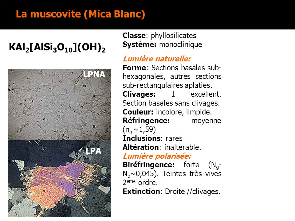 La muscovite (Mica Blanc) KAl 2 [AlSi 3 O 10 ](OH) 2 Lumière naturelle: Forme: Sections basales sub- hexagonales, autres sections sub-rectangulaires a