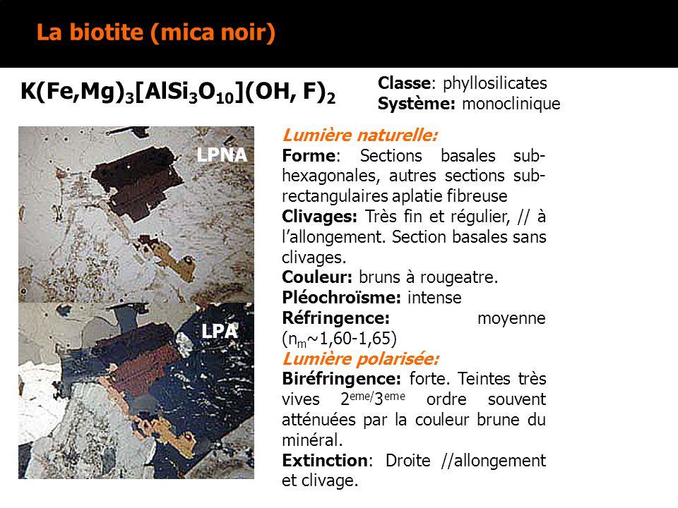 La biotite (mica noir) K(Fe,Mg) 3 [AlSi 3 O 10 ](OH, F) 2 Lumière naturelle: Forme: Sections basales sub- hexagonales, autres sections sub- rectangulaires aplatie fibreuse Clivages: Très fin et régulier, // à lallongement.