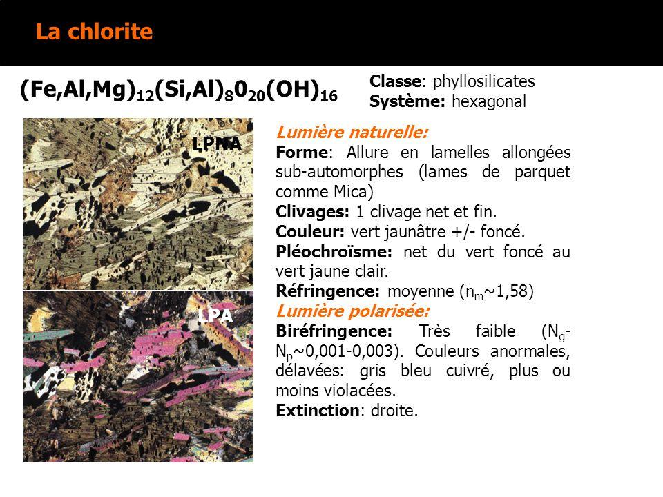 La chlorite (Fe,Al,Mg) 12 (Si,Al) 8 0 20 (OH) 16 Classe: phyllosilicates Système: hexagonal LPNA LPA LPNA LPA Lumière naturelle: Forme: Allure en lamelles allongées sub-automorphes (lames de parquet comme Mica) Clivages: 1 clivage net et fin.