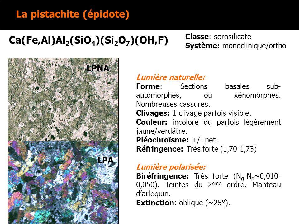 La pistachite (épidote) Ca(Fe,Al)Al 2 (SiO 4 )(Si 2 O 7 )(OH,F) Lumière naturelle: Forme: Sections basales sub- automorphes, ou xénomorphes. Nombreuse