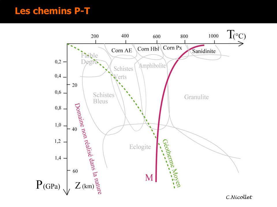Le tableau récapitulatif des observations Minéral 1Minéral 2Minéral 3 LPNA Taille Couleur Forme Relief/indice Clivages Pléochroïsme LPA Teinte Biréfringence Macle Angle dextinction Conclusion Nom Formule