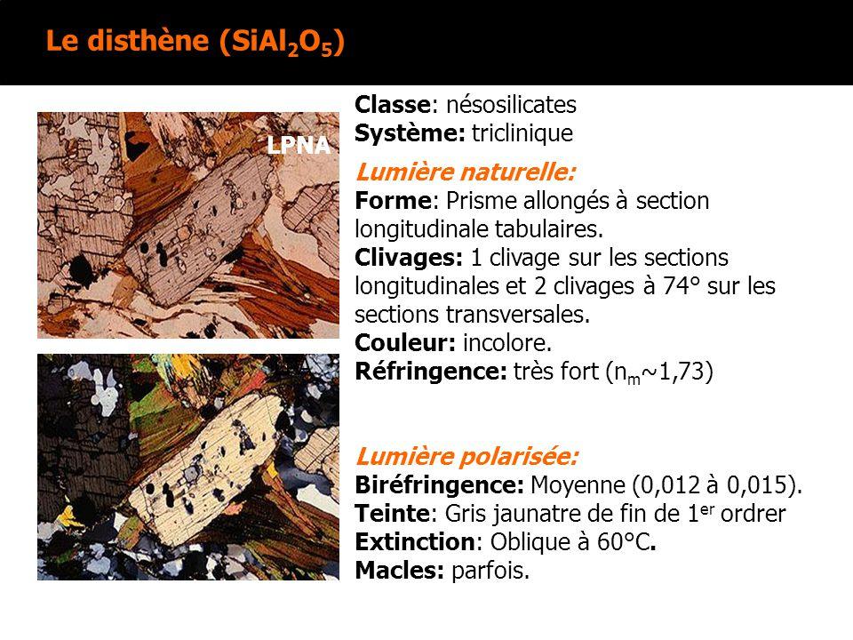 Le disthène (SiAl 2 O 5 ) Lumière naturelle: Forme: Prisme allongés à section longitudinale tabulaires. Clivages: 1 clivage sur les sections longitudi