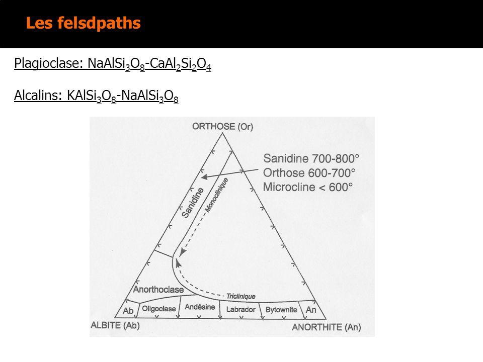 Les felsdpaths plagioclases NaAlSi 3 O 8 -CaAl 2 Si 2 O 8 Lumière naturelle: Forme: Sections allongées sub-rectangulaires ou aciculaires Clivages: 2 très difficiles à observer Couleur: incolore Réfringence: faible (n m ~1,53 à 1,58) Altération: Souvent en paillettes incolores biréfringentes (séricite) Lumière polarisée: Biréfringence: faible (N g -N p ~0,007 à 0,013).