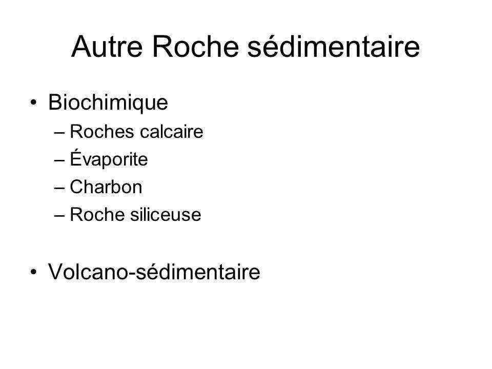 Autre Roche sédimentaire Biochimique –Roches calcaire –Évaporite –Charbon –Roche siliceuse Volcano-sédimentaire