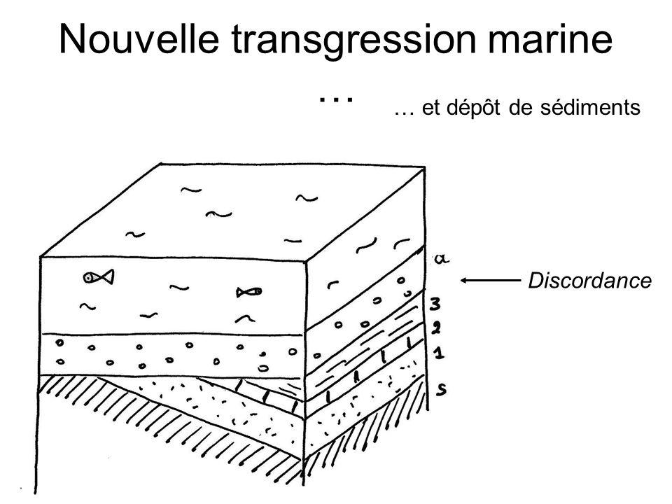 Nouvelle transgression marine … … et dépôt de sédiments Discordance