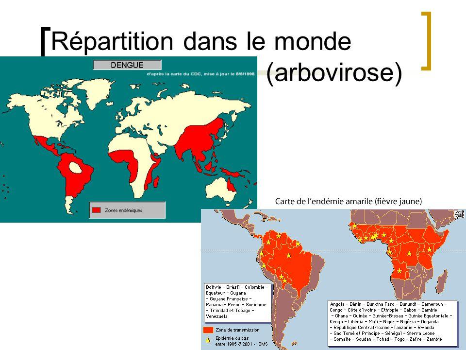 Répartition transmise dans le monde (par rongueur) Arenavirus en amérique du sud Hantavirus