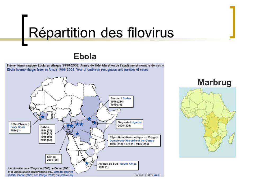 Prise en charge situation épidémiologique Cas sur territoire non français Déclaration aux autorités sanitaires du pays Puis internationale mené par l OMS Coordonne une intervention internationale Enquête épidémiologique