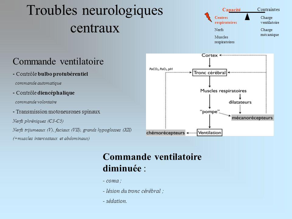 Troubles neurologiques centraux Commande ventilatoire - Contrôle bulbo protubérentiel commande automatique - Contrôle diencéphalique commande volontaire - Transmission motoneurones spinaux Nerfs phréniques (C3-C5) Nerfs trijumeaux (V), faciaux (VII), grands hypoglosses (XII) (+muscles intercostaux et abdominaux) Commande ventilatoire diminuée : - coma ; - lésion du tronc cérébral ; - sédation.