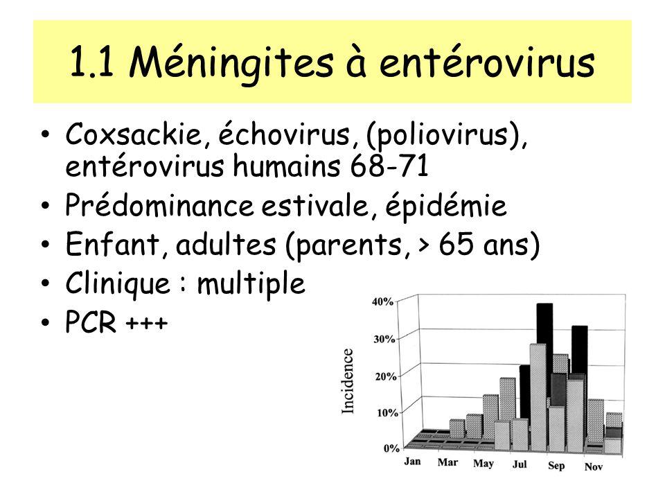 1.1 Méningites à entérovirus Coxsackie, échovirus, (poliovirus), entérovirus humains 68-71 Prédominance estivale, épidémie Enfant, adultes (parents, > 65 ans) Clinique : multiple PCR +++