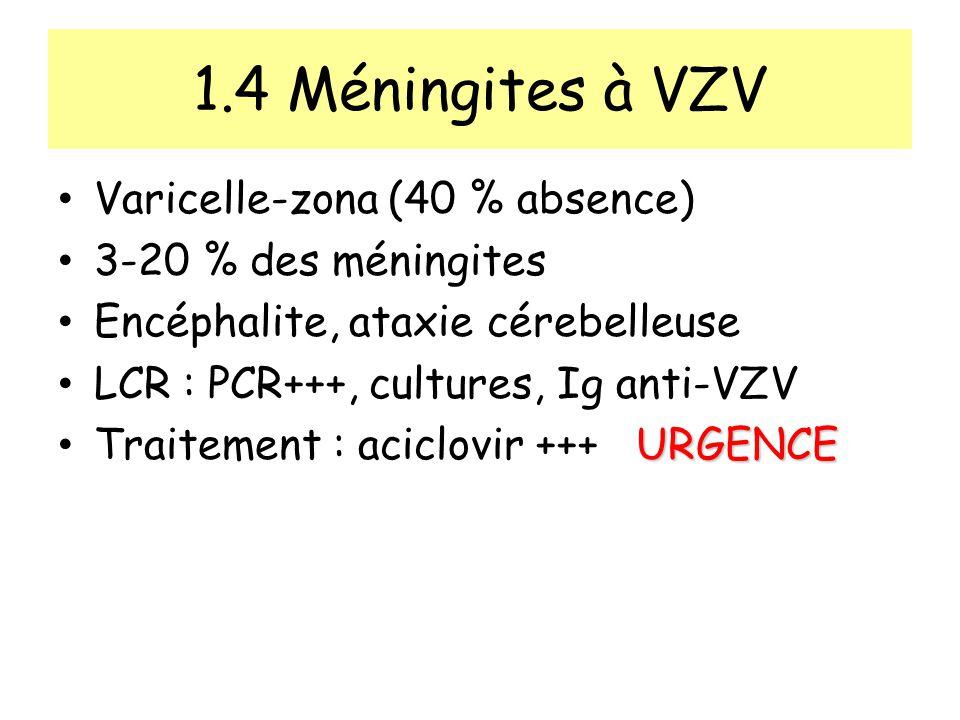 1.4 Méningites à VZV Varicelle-zona (40 % absence) 3-20 % des méningites Encéphalite, ataxie cérebelleuse LCR : PCR+++, cultures, Ig anti-VZV URGENCE Traitement : aciclovir +++ URGENCE