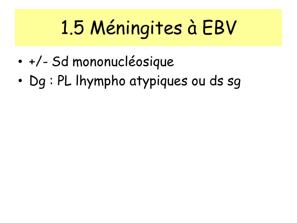 1.5 Méningites à EBV +/- Sd mononucléosique Dg : PL lhympho atypiques ou ds sg