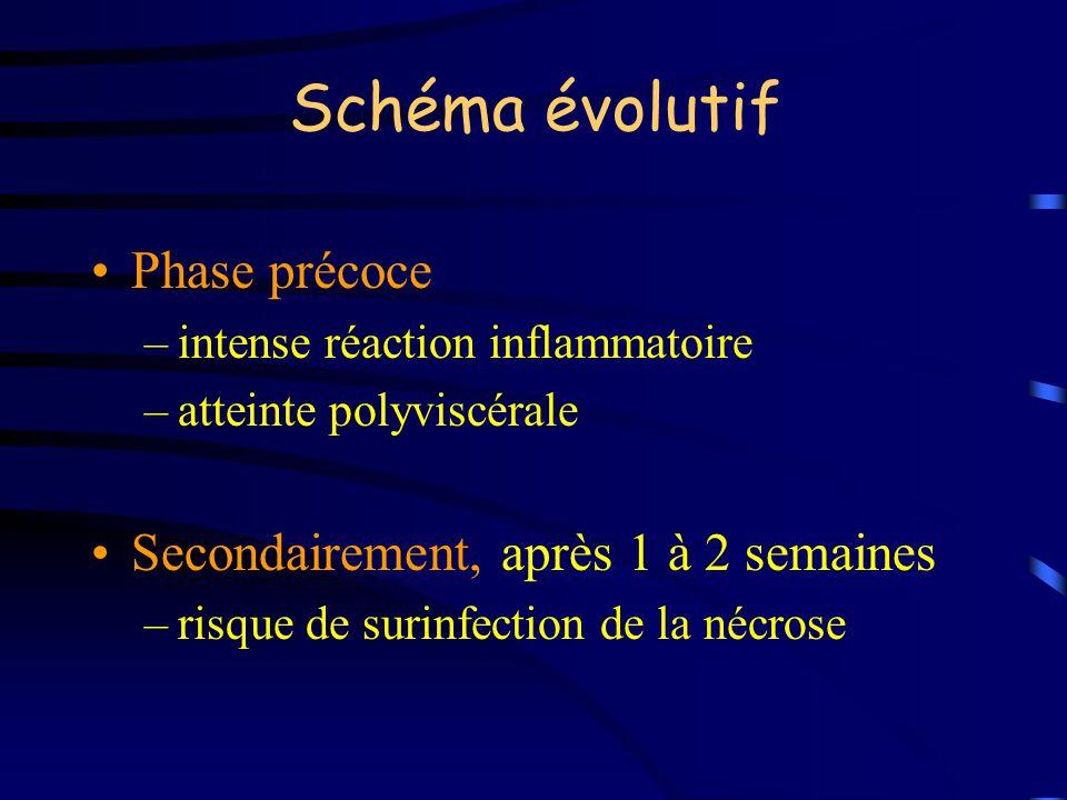 Schéma évolutif Phase précoce –intense réaction inflammatoire –atteinte polyviscérale Secondairement, après 1 à 2 semaines –risque de surinfection de