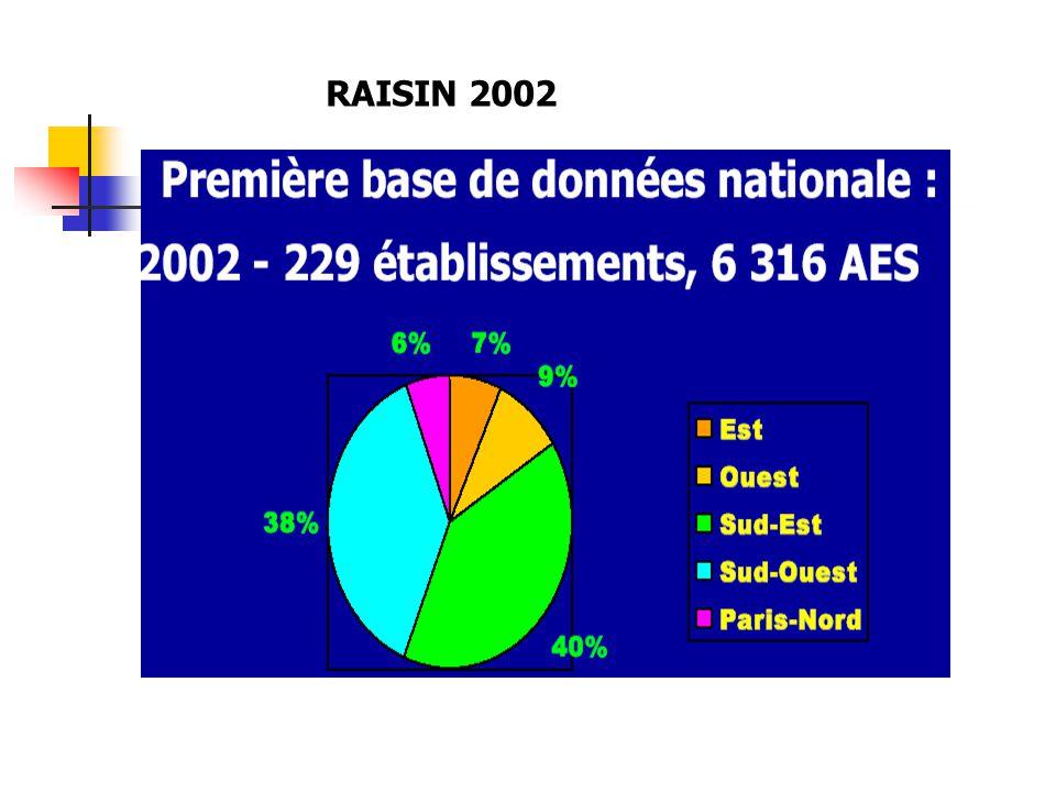 RAISIN 2002