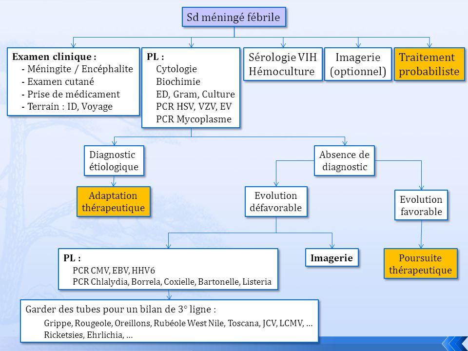 Sd méningé fébrile Examen clinique : - Méningite / Encéphalite - Examen cutané - Prise de médicament - Terrain : ID, Voyage Examen clinique : - Méning