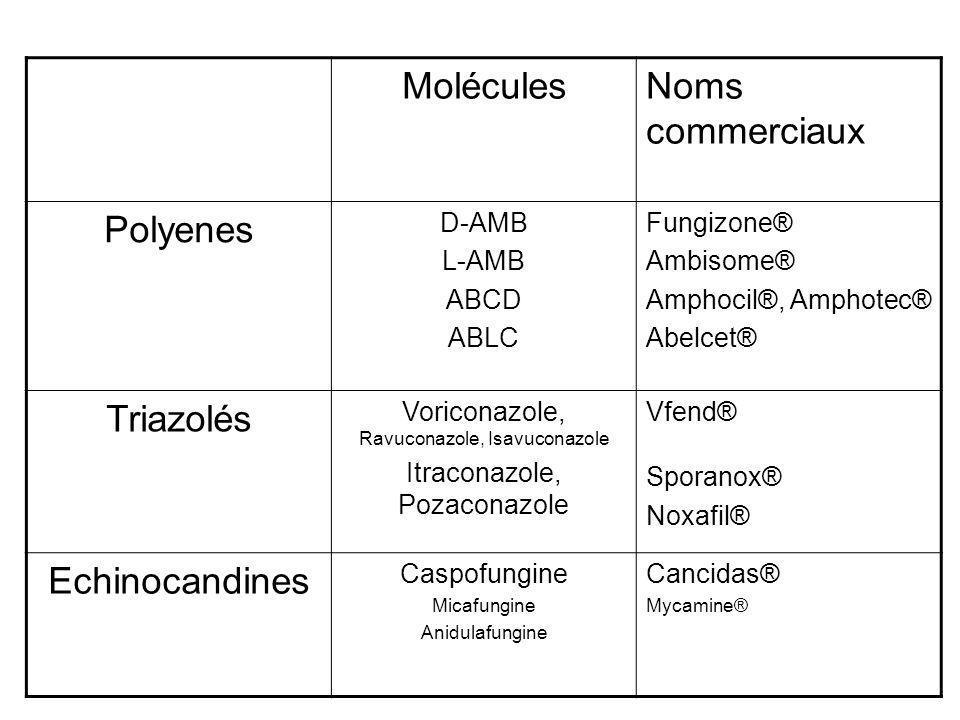 MoléculesNoms commerciaux Polyenes D-AMB L-AMB ABCD ABLC Fungizone® Ambisome® Amphocil®, Amphotec® Abelcet® Triazolés Voriconazole, Ravuconazole, Isav