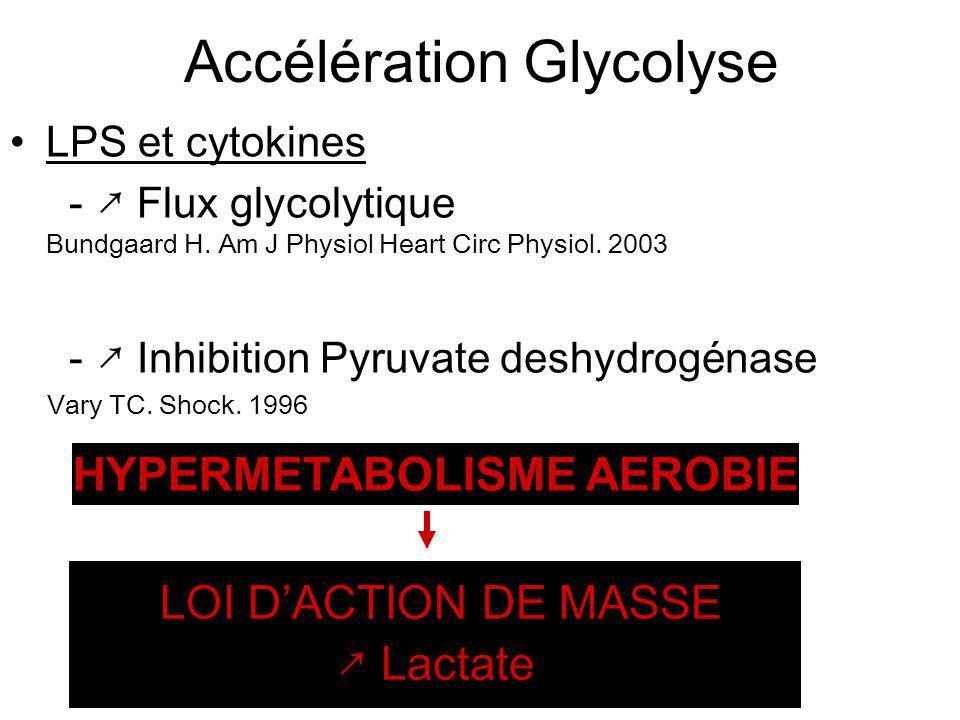 Accélération Glycolyse LPS et cytokines - Flux glycolytique Bundgaard H. Am J Physiol Heart Circ Physiol. 2003 - Inhibition Pyruvate deshydrogénase Va