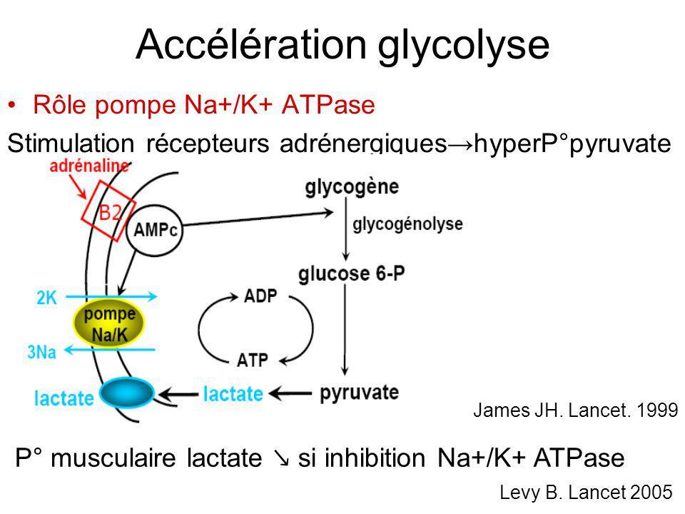 Accélération glycolyse Rôle pompe Na+/K+ ATPase Stimulation récepteurs adrénergiques hyperP°pyruvate James JH. Lancet. 1999 P° musculaire lactate si i