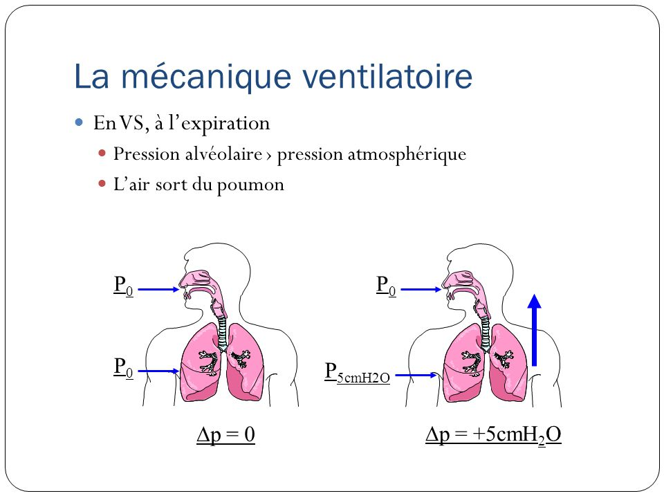 P0P0 P0P0 P0P0 P 5cmH2O p = 0 p = +5cmH 2 O La mécanique ventilatoire En VS, à lexpiration Pression alvéolaire pression atmosphérique Lair sort du poumon