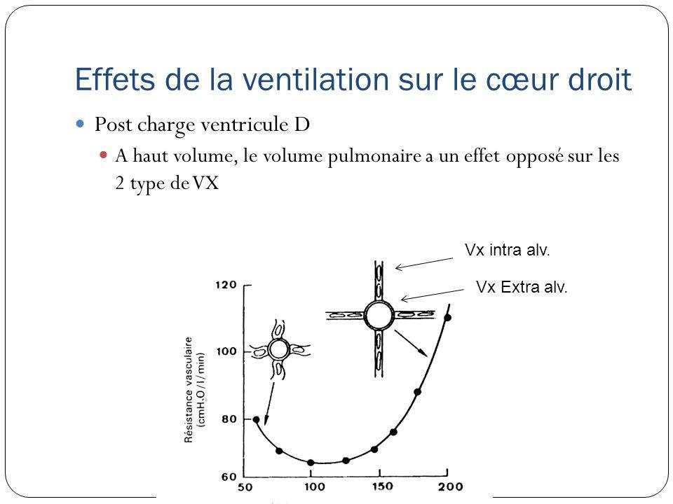 Effets de la ventilation sur le cœur droit Post charge ventricule D A haut volume, le volume pulmonaire a un effet opposé sur les 2 type de VX Vx intra alv.
