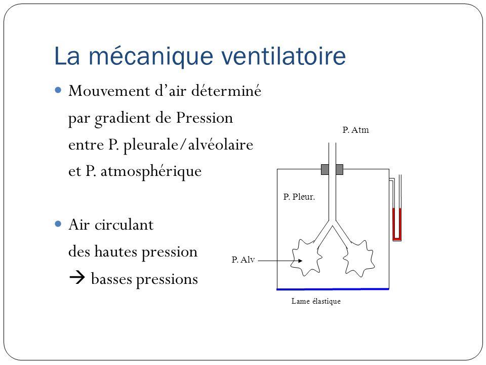La mécanique ventilatoire Les résistances mécaniques 2 forces en opposition: La résistance élastique du poumon ou force de retour Reflète sa tendance naturelle à la rétraction Constituée par f.