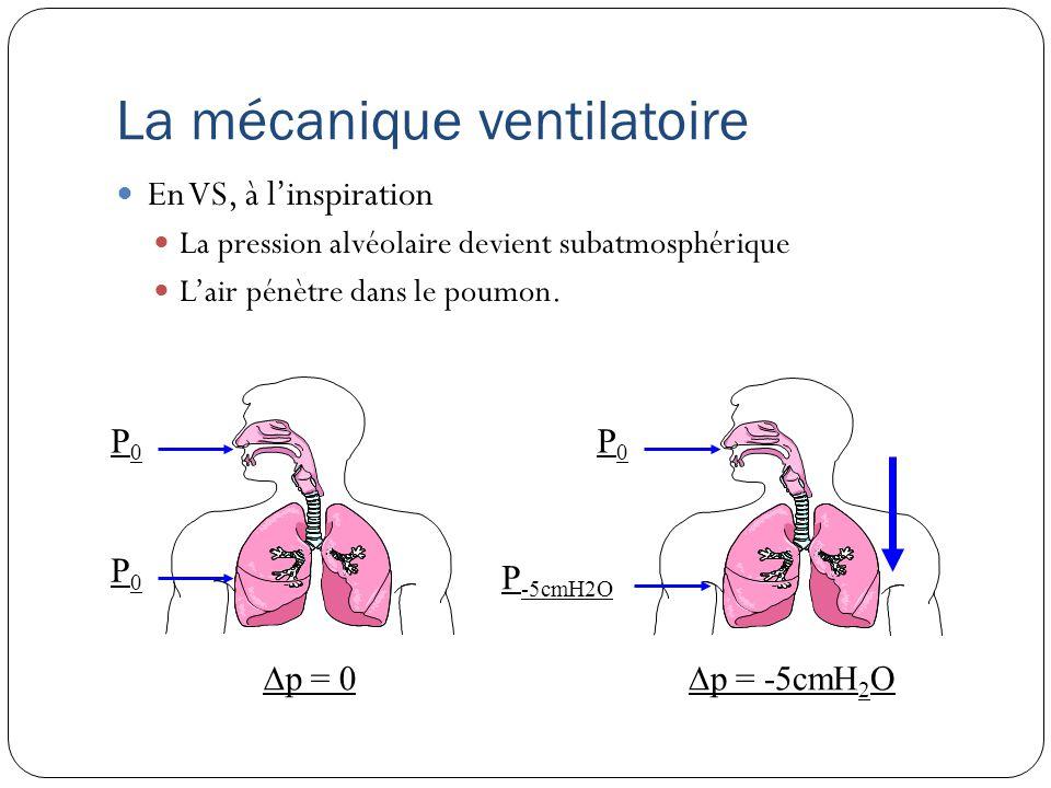 La mécanique ventilatoire En VS, à lexpiration Relâchement des muscles respiratoires.