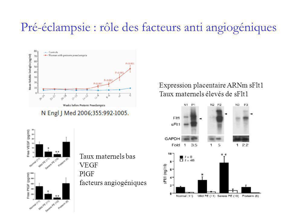 Production radicalaire Apoptose Facteurs anti-angiogéniques