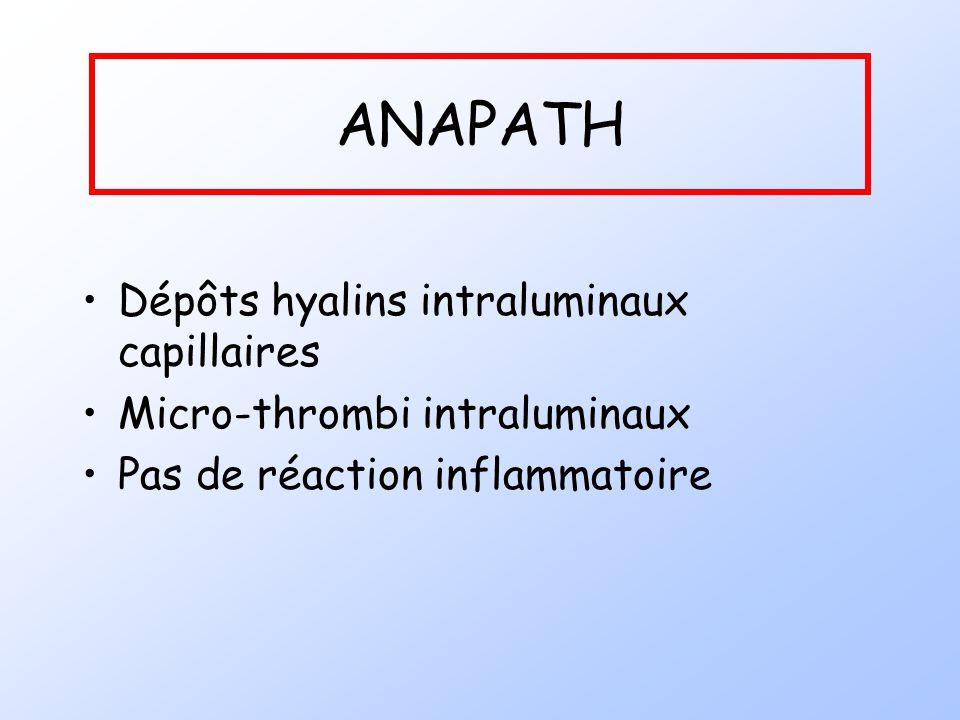 ANAPATH Dépôts hyalins intraluminaux capillaires Micro-thrombi intraluminaux Pas de réaction inflammatoire
