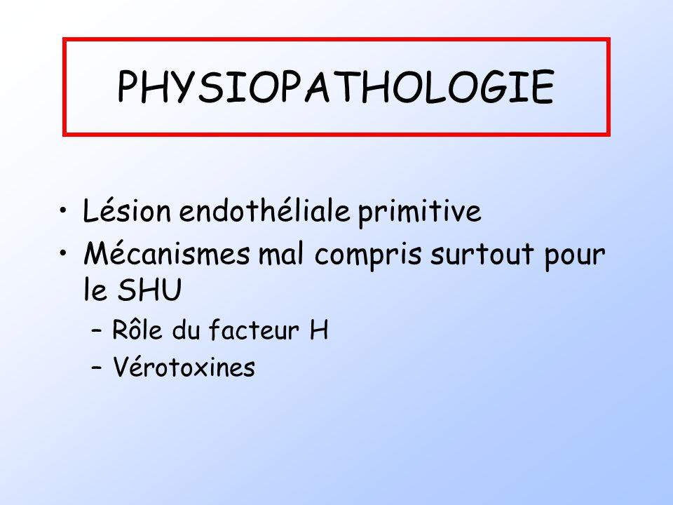 PHYSIOPATHOLOGIE Lésion endothéliale primitive Mécanismes mal compris surtout pour le SHU –Rôle du facteur H –Vérotoxines
