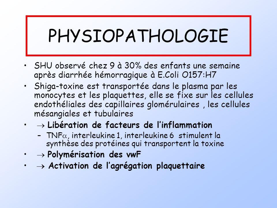 PHYSIOPATHOLOGIE SHU observé chez 9 à 30% des enfants une semaine après diarrhée hémorragique à E.Coli O157:H7 Shiga-toxine est transportée dans le pl