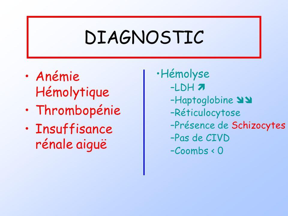 DIAGNOSTIC Anémie Hémolytique Thrombopénie Insuffisance rénale aiguë Hémolyse –LDH –Haptoglobine –Réticulocytose –Présence de Schizocytes –Pas de CIVD