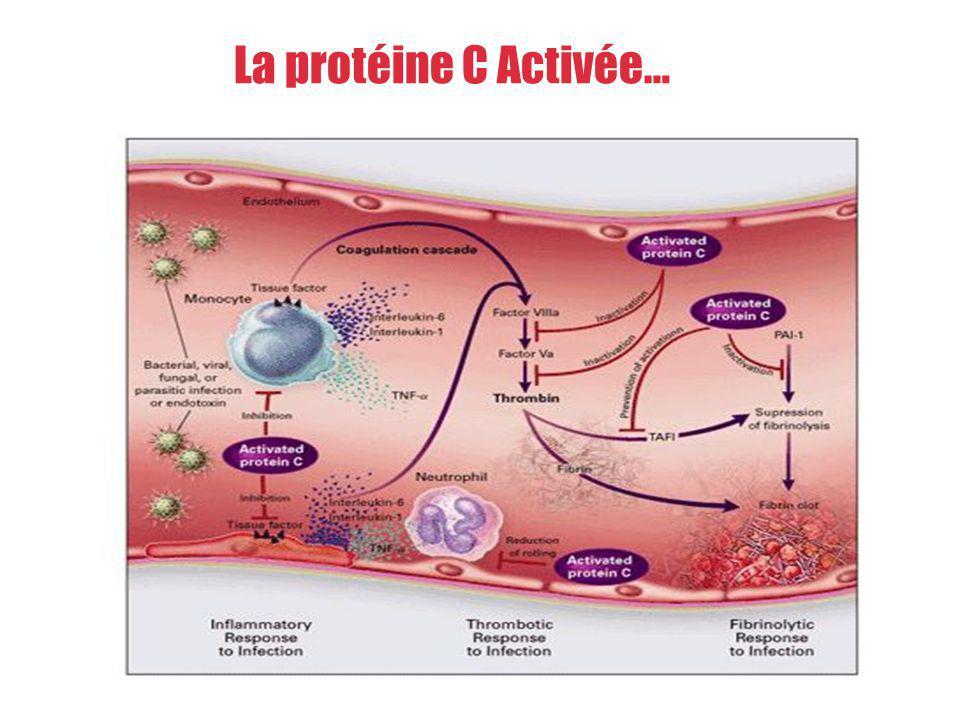 La protéine C Activée…