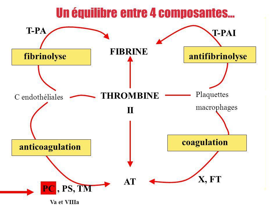 FIBRINE THROMBINE II AT Plaquettes macrophages C endothéliales coagulation anticoagulation fibrinolyseantifibrinolyse PC, PS, TM T-PA T-PAI X, FT Form