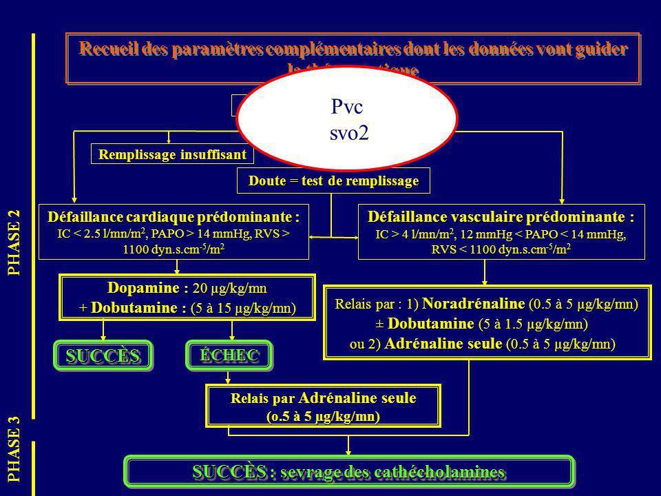 Recueil des paramètres complémentaires dont les données vont guider la thérapeutique Cathéter de Swan-Ganz SUCCÈSSUCCÈS Remplissage insuffisant Doute