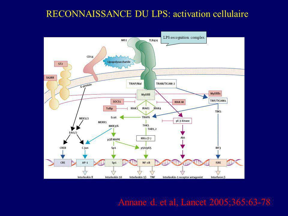 LPS-recognition complex Annane d. et al, Lancet 2005;365:63-78 RECONNAISSANCE DU LPS: activation cellulaire