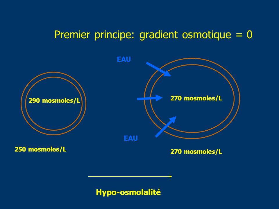 Premier principe: gradient osmotique = 0 250 mosmoles/L 290 mosmoles/L 270 mosmoles/L Hypo-osmolalité EAU