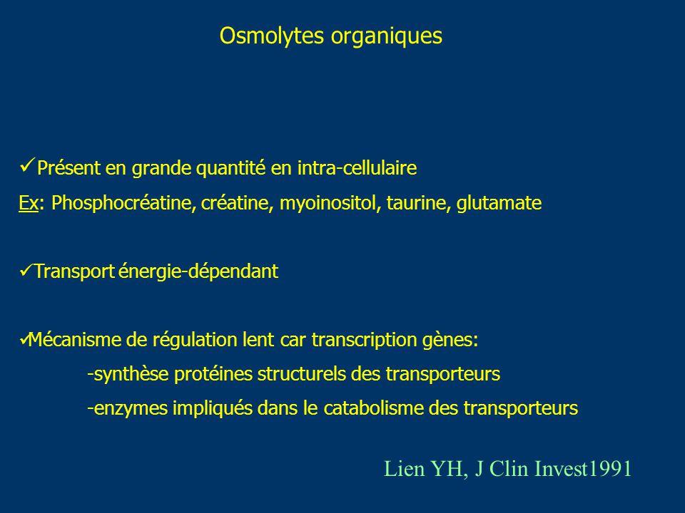 Osmolytes organiques Présent en grande quantité en intra-cellulaire Ex: Phosphocréatine, créatine, myoinositol, taurine, glutamate Transport énergie-d