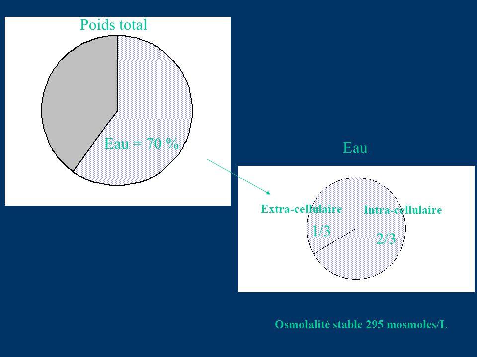 Poids total Eau = 70 % Intra-cellulaire Extra-cellulaire Eau 1/3 2/3 Osmolalité stable 295 mosmoles/L