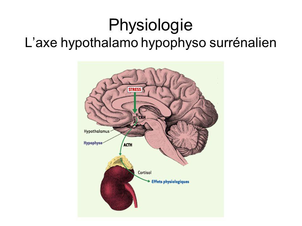 Physiologie Laxe hypothalamo hypophyso surrénalien