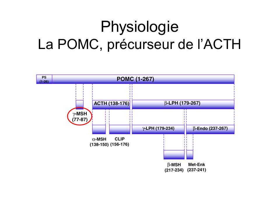 Diagnostic biologique Test à la métopirone Bloque la transformation du 11-desoxycortisol en cortisol Prise orale 30mg/kg puis dosage 11- desoxycortisol et de lACTH Hypoglycémie insulinique Stress pour stimuler la sécrétion dACTH 0,10 à 0,15 UI/kg dinsuline puis dosage de lACTH et du cortisol à 15, 30, 45, 60 et 90 minutes Dosage ACTH à distance