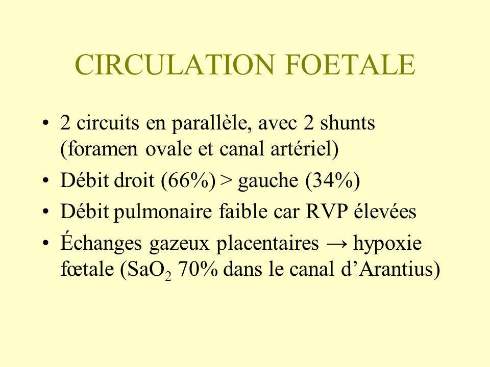 CIRCULATION FOETALE 2 circuits en parallèle, avec 2 shunts (foramen ovale et canal artériel) Débit droit (66%) > gauche (34%) Débit pulmonaire faible car RVP élevées Échanges gazeux placentaires hypoxie fœtale (SaO 2 70% dans le canal dArantius)