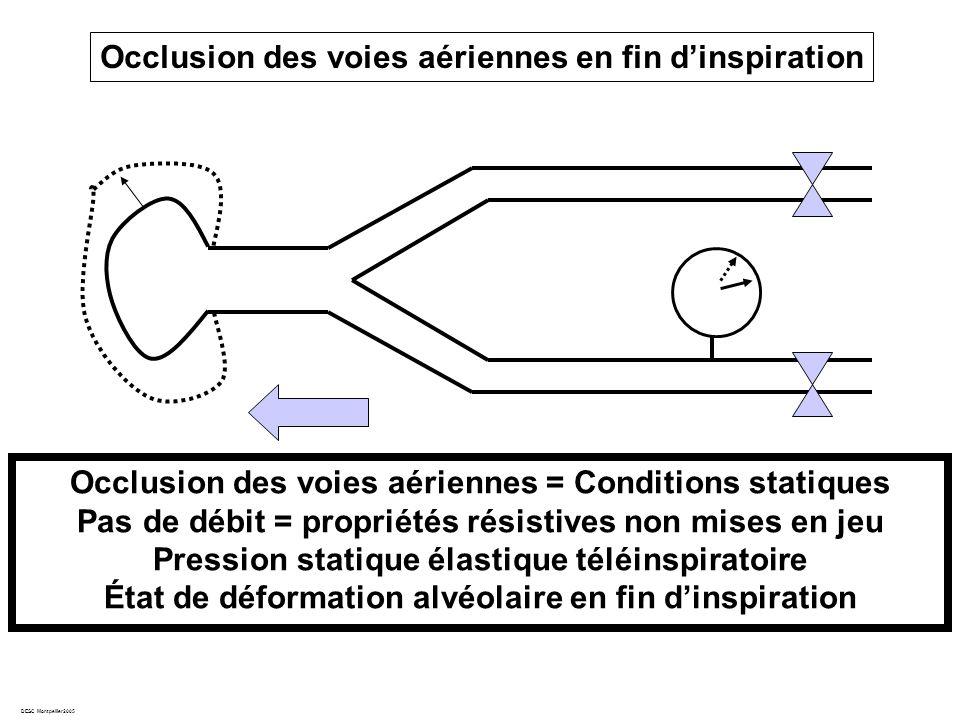 DESC Montpellier2005 Occlusion des voies aériennes en fin dinspiration Occlusion des voies aériennes = Conditions statiques Pas de débit = propriétés résistives non mises en jeu Pression statique élastique téléinspiratoire État de déformation alvéolaire en fin dinspiration