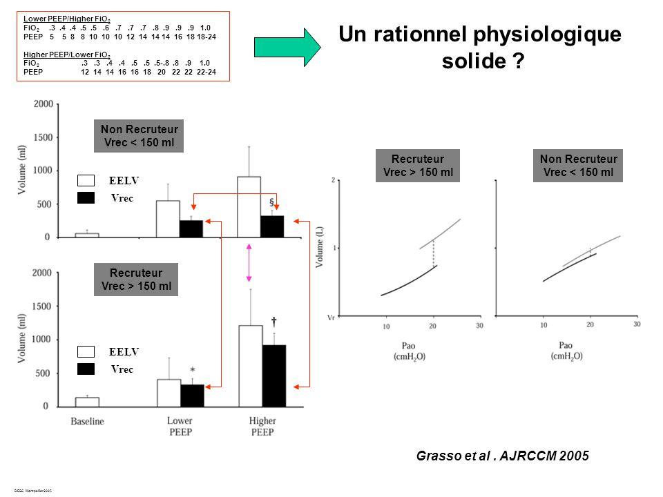 DESC Montpellier2005 Grasso et al.