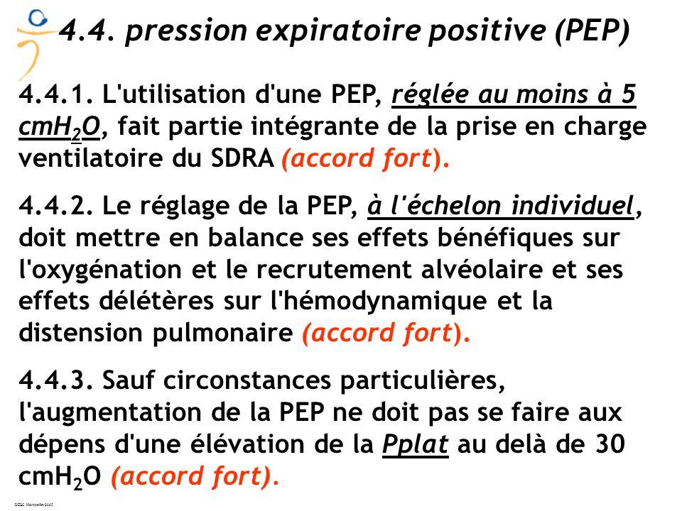 DESC Montpellier2005 4.4.1.
