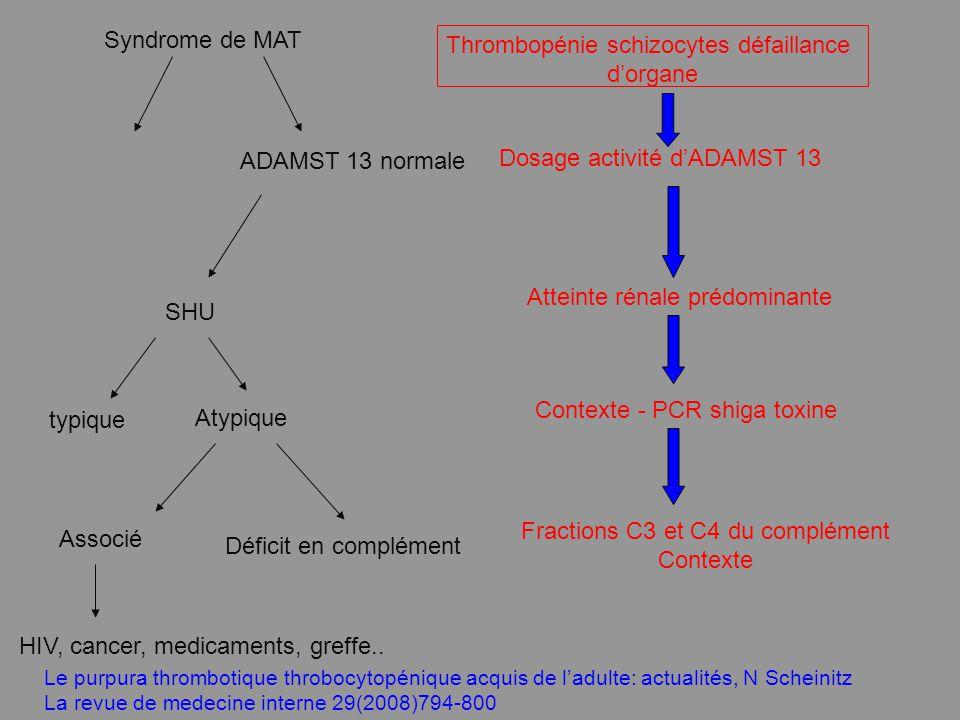 Dosage activité dADAMST 13 Thrombopénie schizocytes défaillance dorgane Syndrome de MAT ADAMST 13 normale SHU typique Atypique Associé Déficit en comp