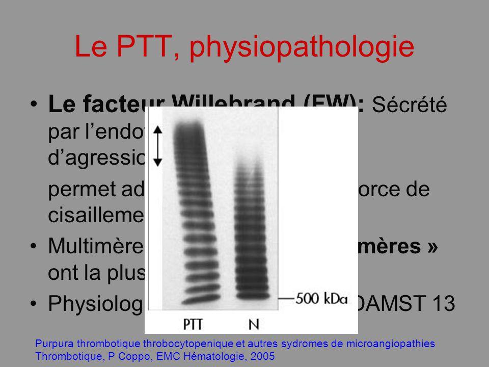Le PTT, physiopathologie Le facteur Willebrand (FW): Sécrété par lendothélium vasculaire lors dagression endothéliale permet adhésivité plaquettaire (