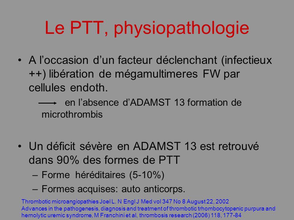 Le PTT, physiopathologie A loccasion dun facteur déclenchant (infectieux ++) libération de mégamultimeres FW par cellules endoth. en labsence dADAMST