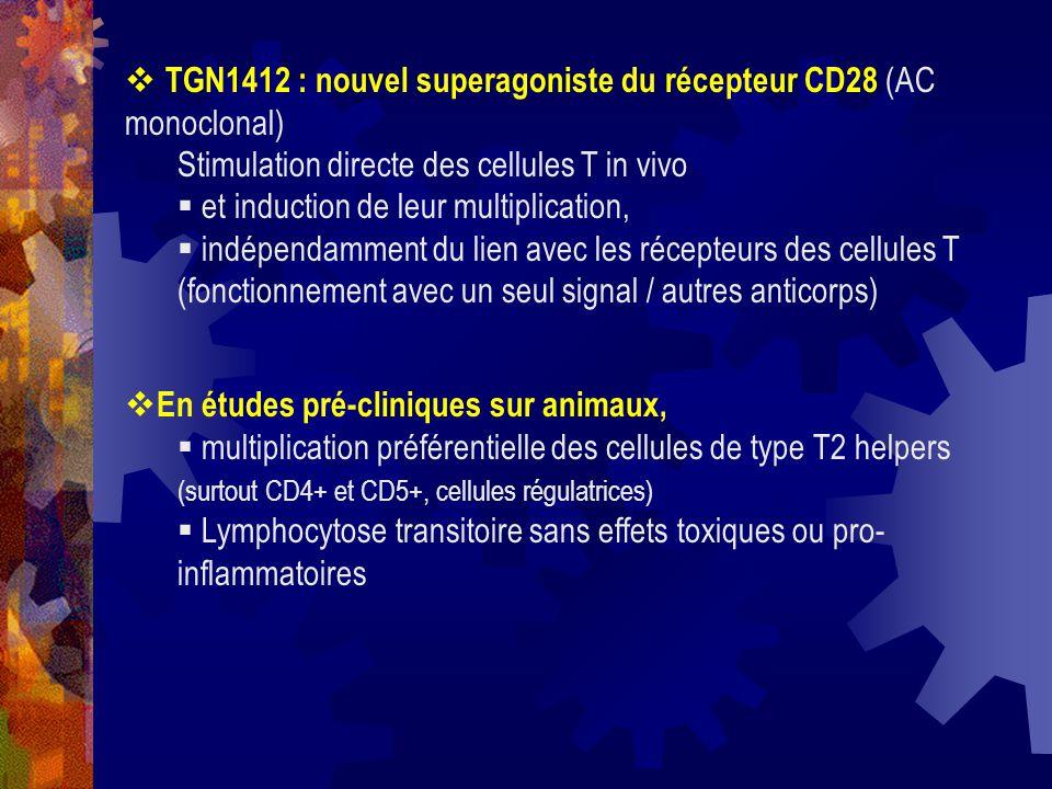 TGN1412 : nouvel superagoniste du récepteur CD28 (AC monoclonal) Stimulation directe des cellules T in vivo et induction de leur multiplication, indép