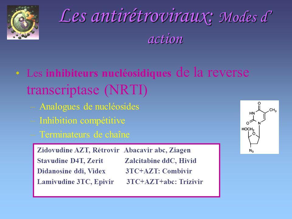 Les antirétroviraux: Modes d action Les inhibiteurs nucléosidiques de la reverse transcriptase (NRTI) –Analogues de nucléosides –Inhibition compétitive –Terminateurs de chaîne Zidovudine AZT, Rétrovir Abacavir abc, Ziagen Stavudine D4T, Zerit Zalcitabine ddC, Hivid Didanosine ddi, Videx 3TC+AZT: Combivir Lamivudine 3TC, Epivir 3TC+AZT+abc: Trizivir