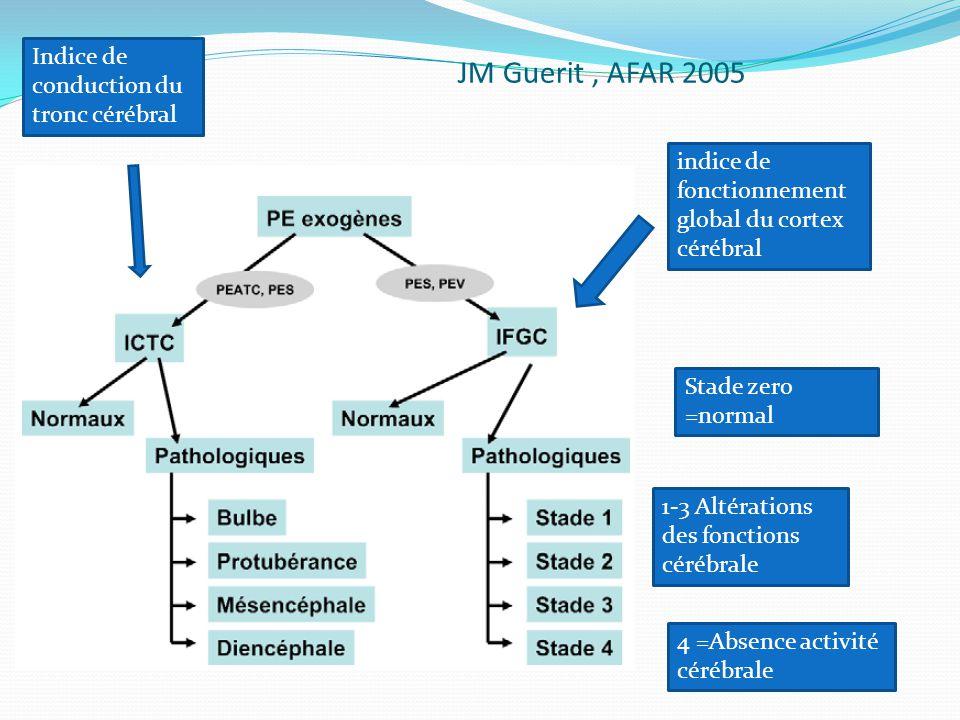 JM Guerit, AFAR 2005 indice de fonctionnement global du cortex cérébral Indice de conduction du tronc cérébral Stade zero =normal 1-3 Altérations des